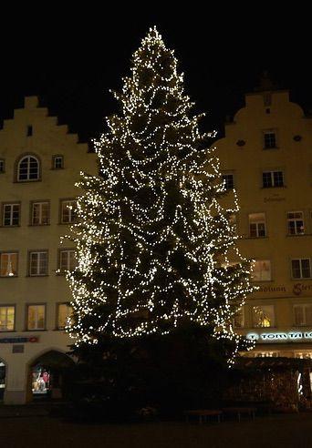 Dieser Christbaum benötigt einen besonders großen Christbaumständer